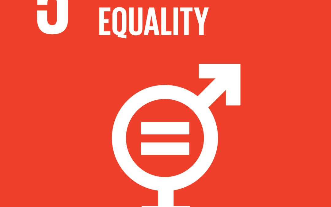 Gender Equality: How do we get there